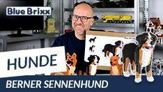YouTube: Berner Sennenhund aus Diamond Blocks - BlueBrixx Pro @ BlueBrixx