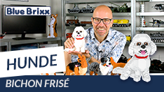 Youtube: Bichon Frisé aus Diamond Blocks von BlueBrixx Pro @ BlueBrixx