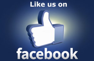 BlueBrixx auch bei Facebook