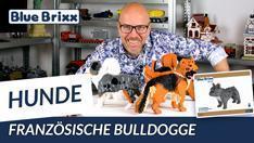 YouTube: Französische Bulldogge aus Diamond Blocks - BlueBrixx Pro @ BlueBrixx