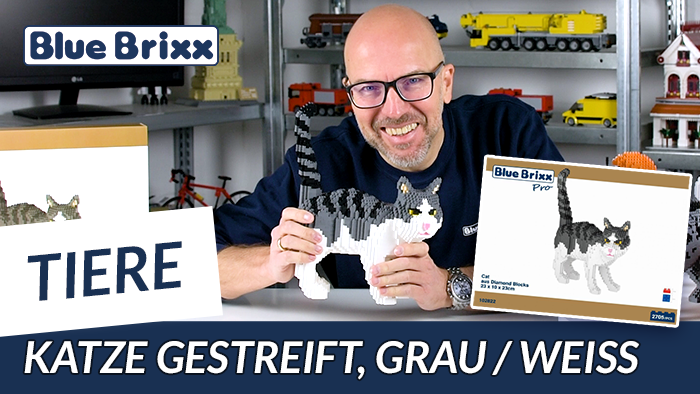Youtube: Grau-weiß gestreifte Katze von BlueBrixx Pro @ BlueBrixx - mit Auflösung der Umfrage!