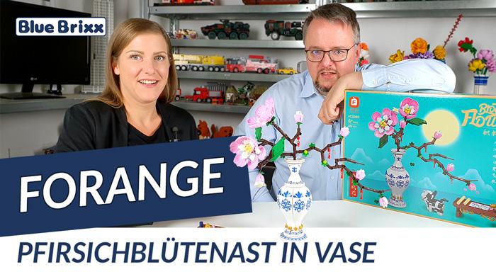Youtube: Pfirsichblütenast in einer Vase von Forange @ BlueBrixx