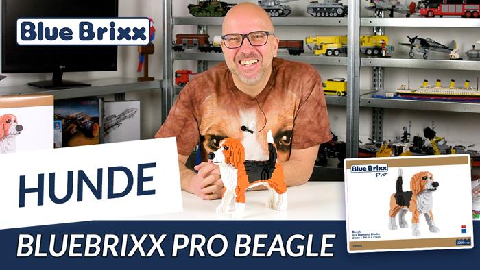 Youtube: Beagle aus Diamond Blocks von BlueBrixx - unser erstes BlueBrixx Pro-Modell!