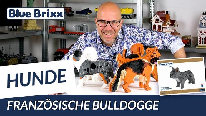 Französische Bulldogge aus Diamond Blocks - BlueBrixx Pro