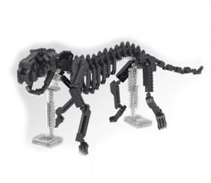 Dinosaurier Skelett  Tiger