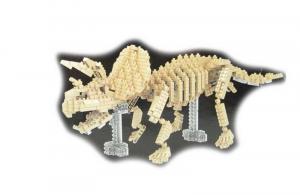 Triceratops  große Version