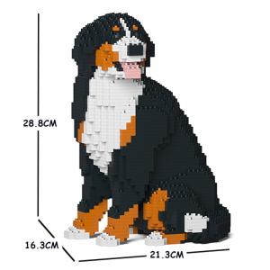 Berner Sennenhund 05S