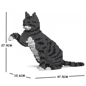 Katze  gibt Pfötchen + grau