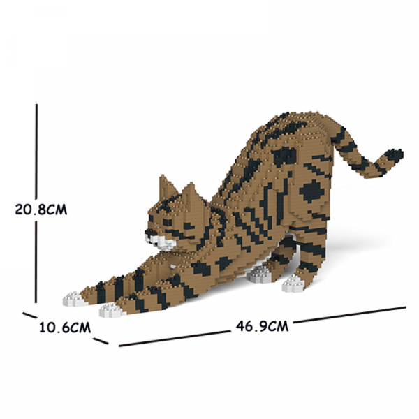 Cat  stretching + brown/black/white