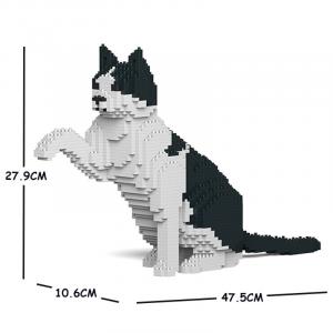 Katze  schwarz & weiß + gibt Pfötchen