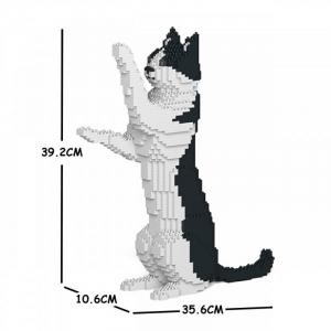 Katze schwarz & weiß