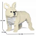 French Bulldog creamy white