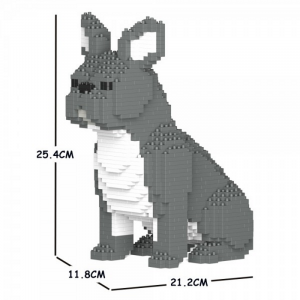 French Bulldog grey + sitting