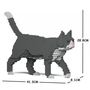 Grau/weiße Katze laufend