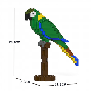 Yellow Collared Macaw 01S