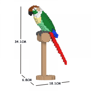 Green Cheek Conure 01S-M01
