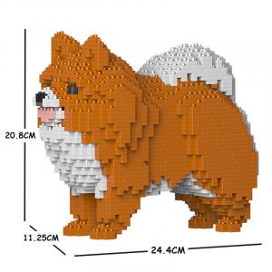 Pomeranian weiß-orange