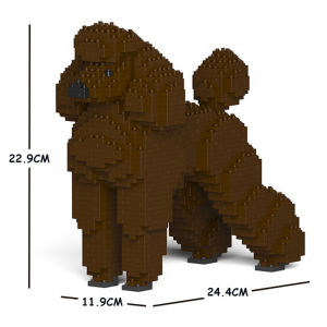 Standard Poodle brown