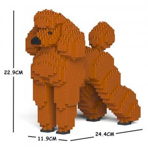 Standard Poodle orange