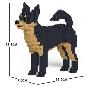 Chihuahua schwarz-beige