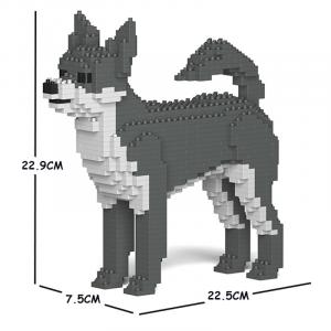 Chihuahua weiß-grau