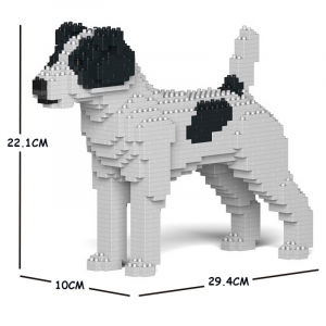 Jack Russell Terrier white-black