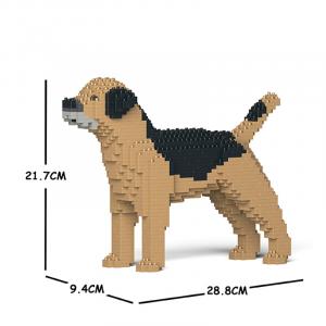 Border Terrier beige-black