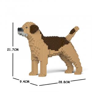 Border Terrier beige-brown