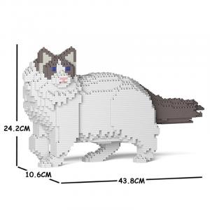 Ragdoll Katze stehend