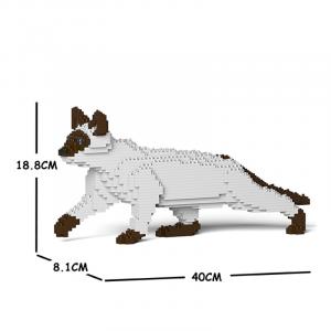 Siamese Cat creeping + white-brown