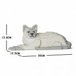 Tonkinese Cat lying