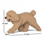 Toy Poodle beige