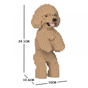 Toy Poodle standing + beige