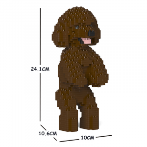 Toy Poodle standing + brown