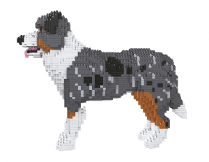 Australian Shepherd, Hund