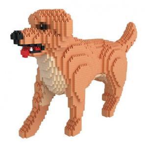 Golden Retriever, dog