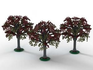 Beech trees, set of 3