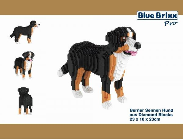 Berner Sennen, dog