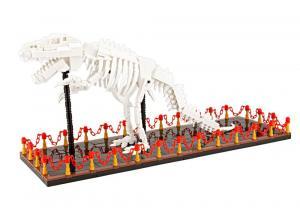 T-Rex Skeleton Display