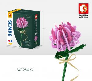 Chrysantheme in rosa