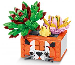 Cactus in a Seal Pot