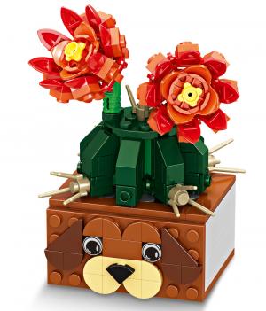 Cactus in a Dog Pot