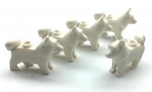 Dog, Cream (5 x)