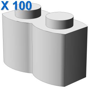 PALISADE BRICK 1X2 X 100