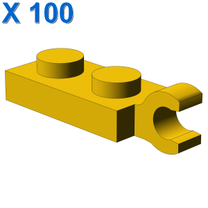 PLATE 2X1 W/HOLDER,VERTICAL X 100